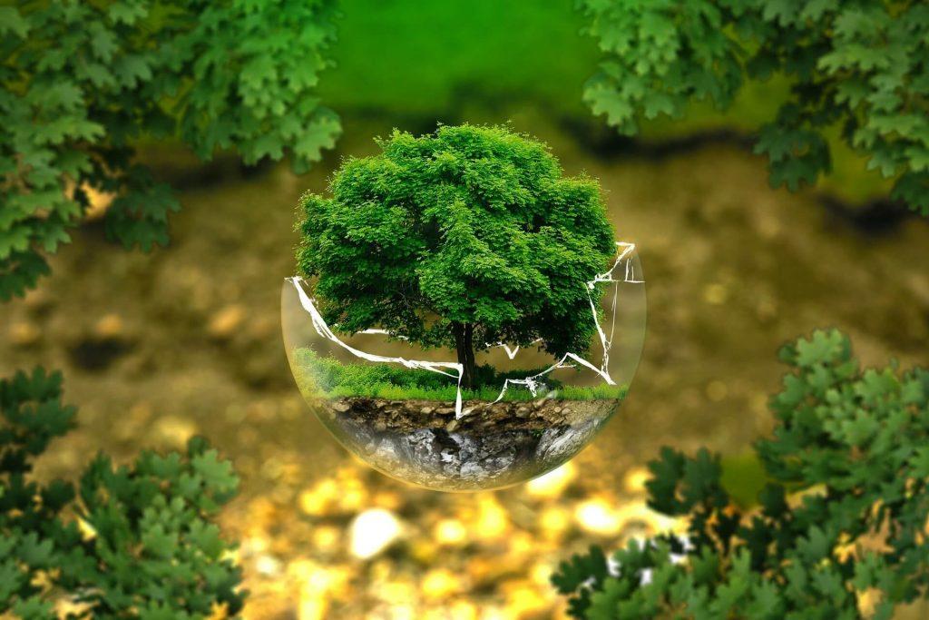 environmental protection image